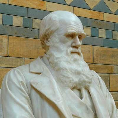Statue of Charles Darwin at Natural History Museum